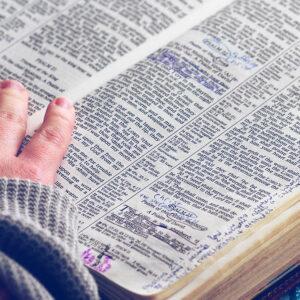 bc_header-bible2